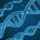 Care este potențialul genomicii personalizate si epigeneticii în domeniul științelor cosmetice?