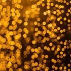 Cianobacteriile: Viitorul cremelor solare?